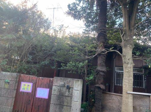 東京都府中市栄町の木造平家解体工事+植栽撤去 施工事例木造平家の解体工事前の様子